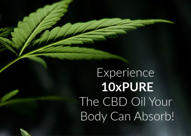 Experience 10xPURE The CBD Oil Your Body Can Absorb!