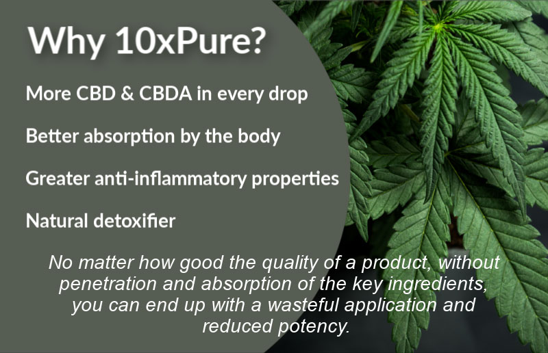 Why 10xPure? More CBD & CBDA in every drop  Better absorption by the body.  Greater anti-inflammatory properties.  Natural detoxifier. No matter how good the quality of a product, without penetration and absorption of the key ingredients, you can end up with a wasteful application and reduced potency.